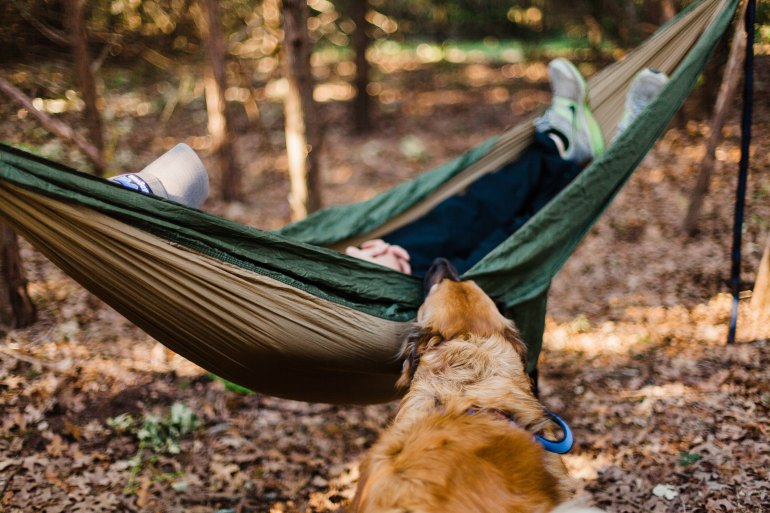 FallCampingDoggoheather-mount-607114-unsplash